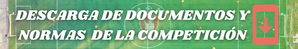 DESCARGA DE DOCUMENTOS